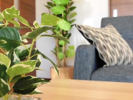 ニトリ製の家具